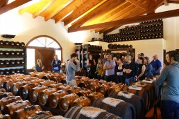 visit at balsamic vinegar factory